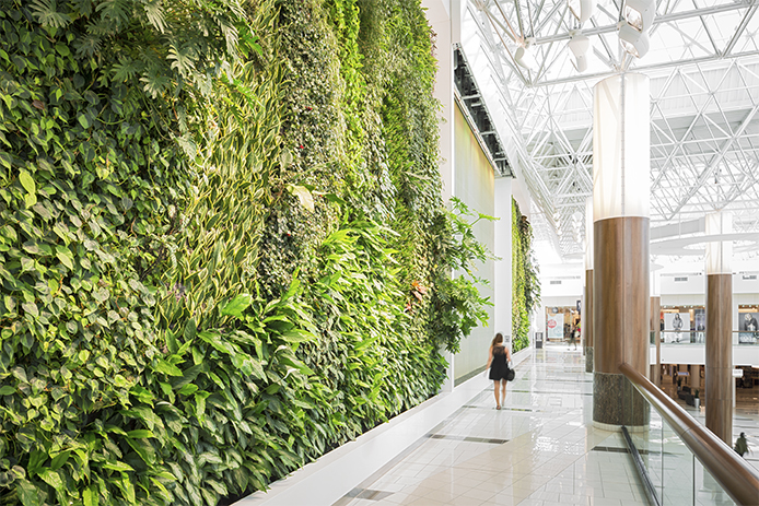 Press Releases Verical Garden Living Wall Or Green Residential